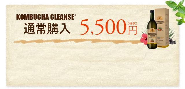 通常購入 5,500円(税抜)